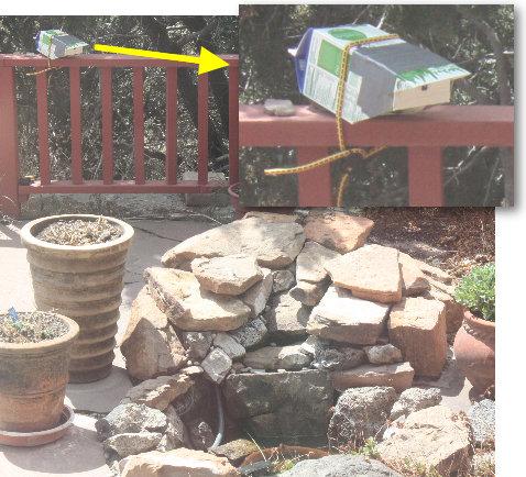 [bird camera, installed]