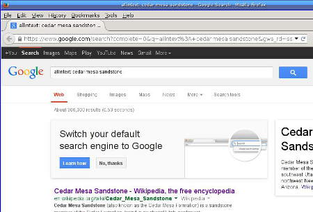 [Google begging: Switch your default search engine to Google]