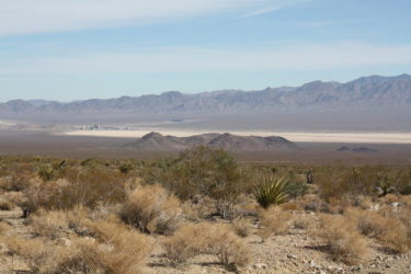 [Primm and Ivanpah Dry Lake]