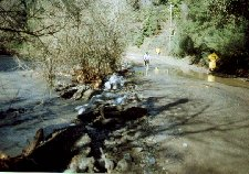 [Stevens Canyon Road, Flooded]