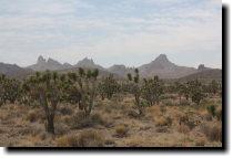 [Castle Peaks, Mojave]