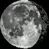 [moonroot]